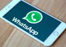 whatsapp business per hotel